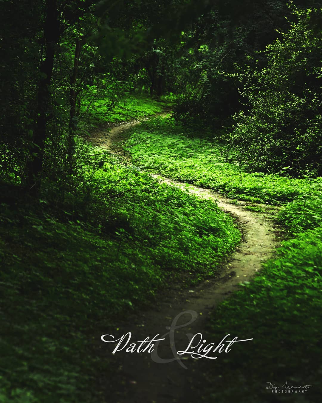 #path & #Light.  #wallpaper click. ❇✴✳❇✴✳❇✴✳❇✴✳❇✴✴ #road #weather #october #spring #morning #nature #ahmedabad #photography #macro #naturephotography #macrophotography #photographer #lens #topshot #waterdrop #50mm #world_photo_shots #yourshotphotographer #natgeo #natgeographic #natgeoyourshot #yourshot #canonmoment  #canon #cpfeatureme #cp #macro  @indiapictures @indian.hobbygraphy @photographers_of_india @indiapictures @indianshutterbugs @indian_photography_hub_ @official_photography_hub @colours.of.india @pixelpanda_india @pixelpanda_india @india.clicks @india_everyday @uniquephotographyclub @itz_mumbai @photographers_of_india